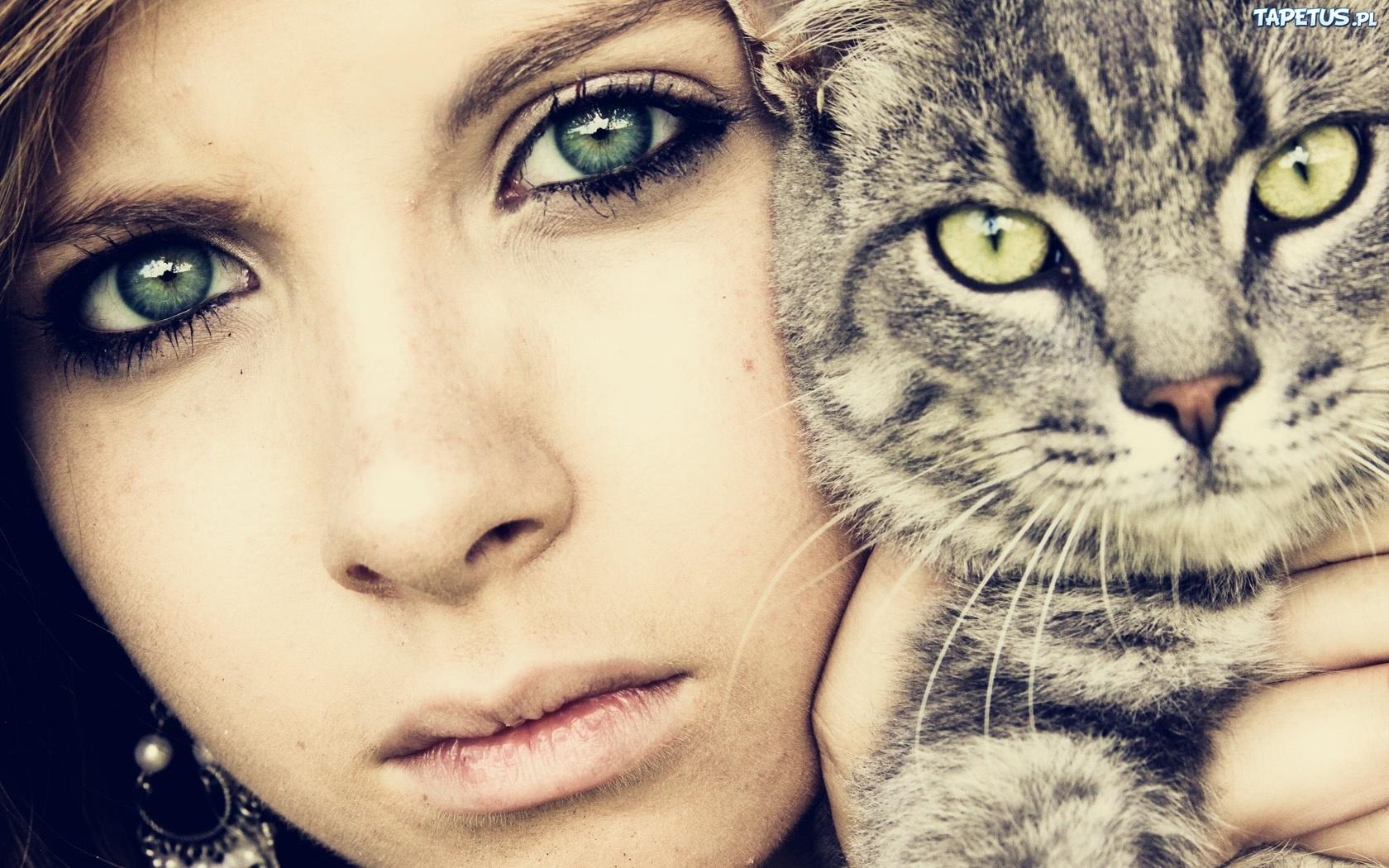 девушка котенок лицо взгляд  № 3597575  скачать