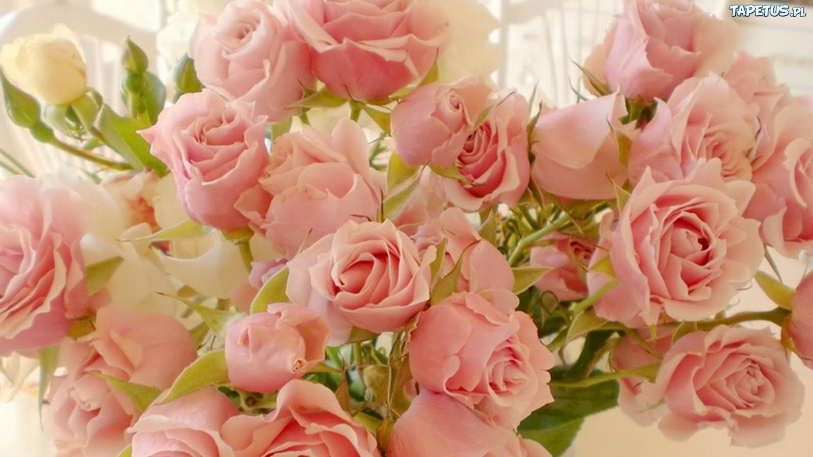 Роза с днем рождения нежные поздравления