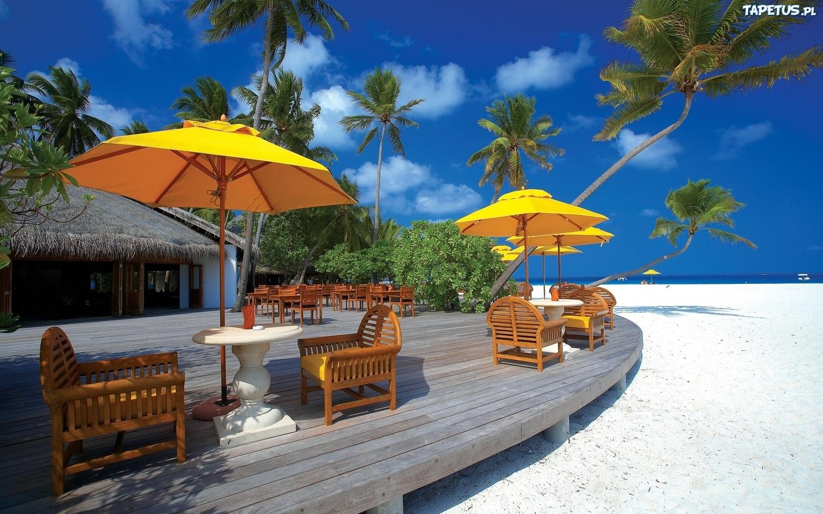 Pla a palmy parasole piasek wakacje for Hotel luxury definicion