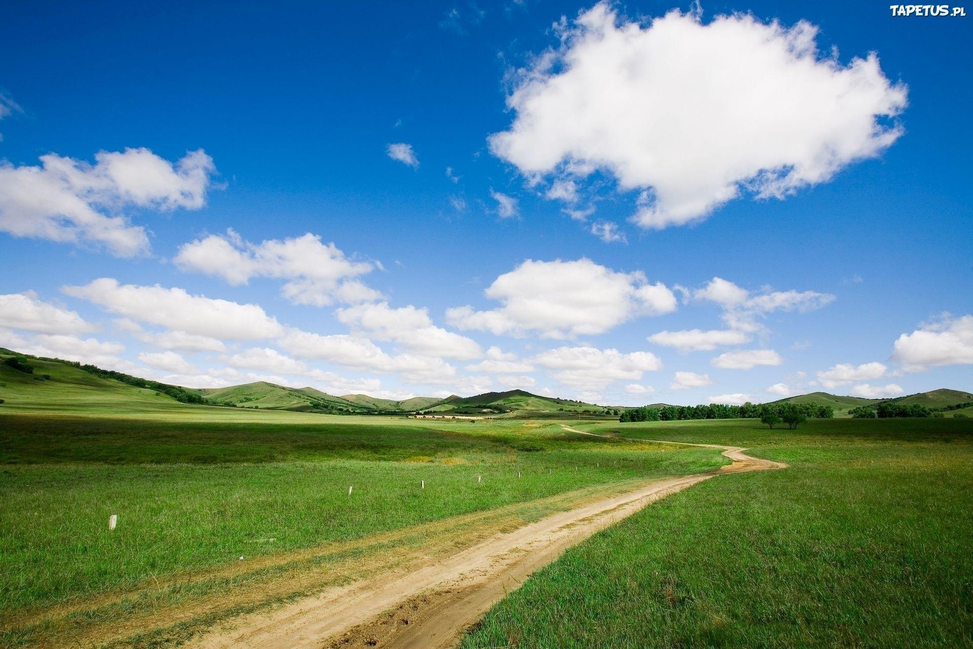 Дорога через зеленое поле  № 2604538 бесплатно