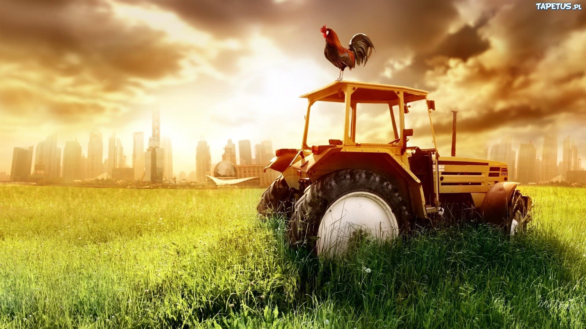 146574_zachod-slonca-traktor-kogut.jpg