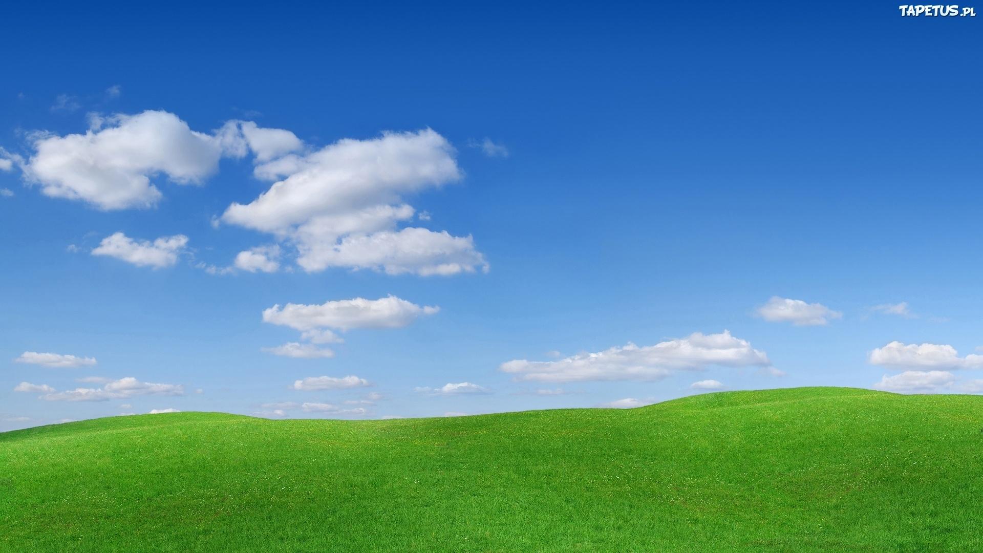 Облака, трава, цветы, озеро  № 1963152 без смс