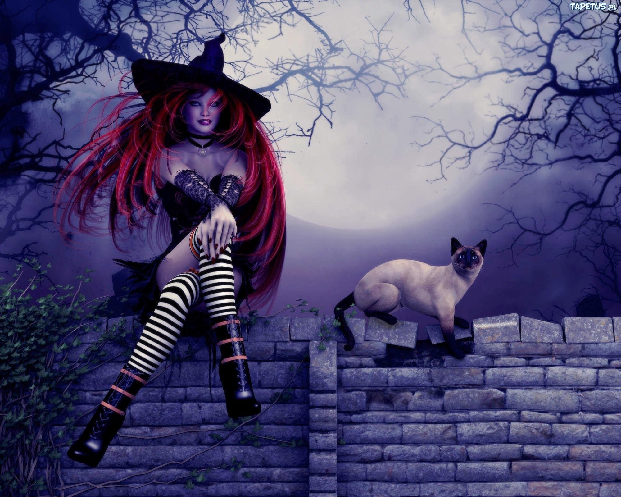 [Obrazek: 150481_halloween-kobieta-czarownica-kot.jpg]