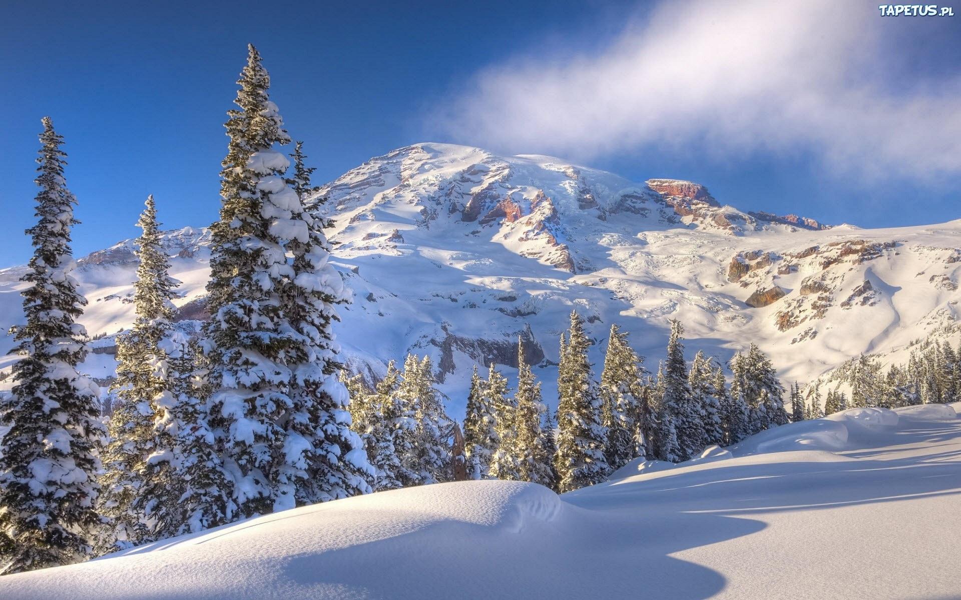 природа снег зима деревья горы  № 2577091  скачать