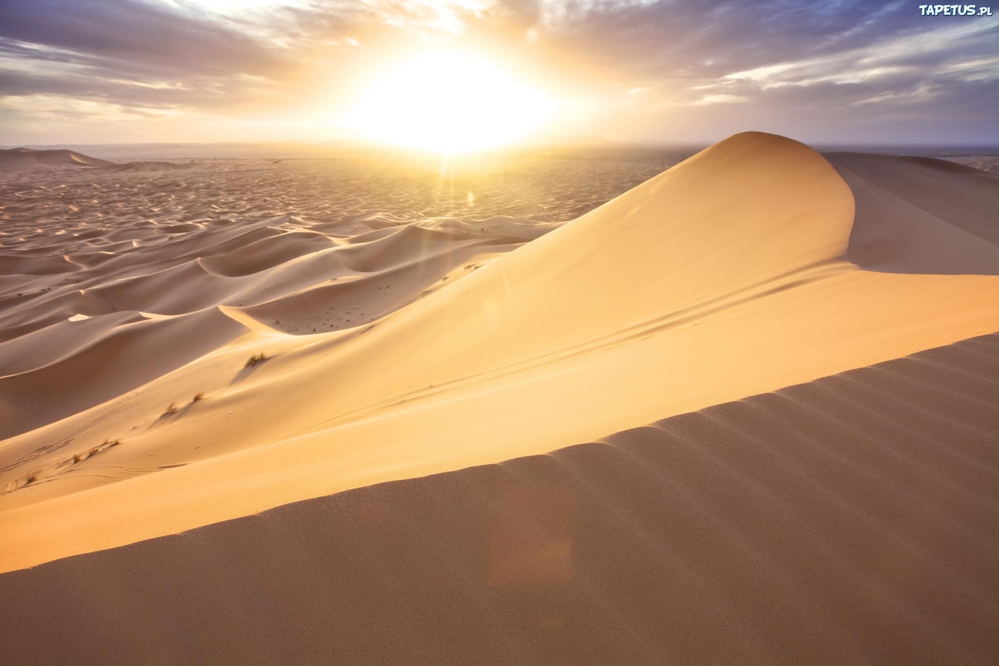 природа пустыня солнце  № 948789 загрузить