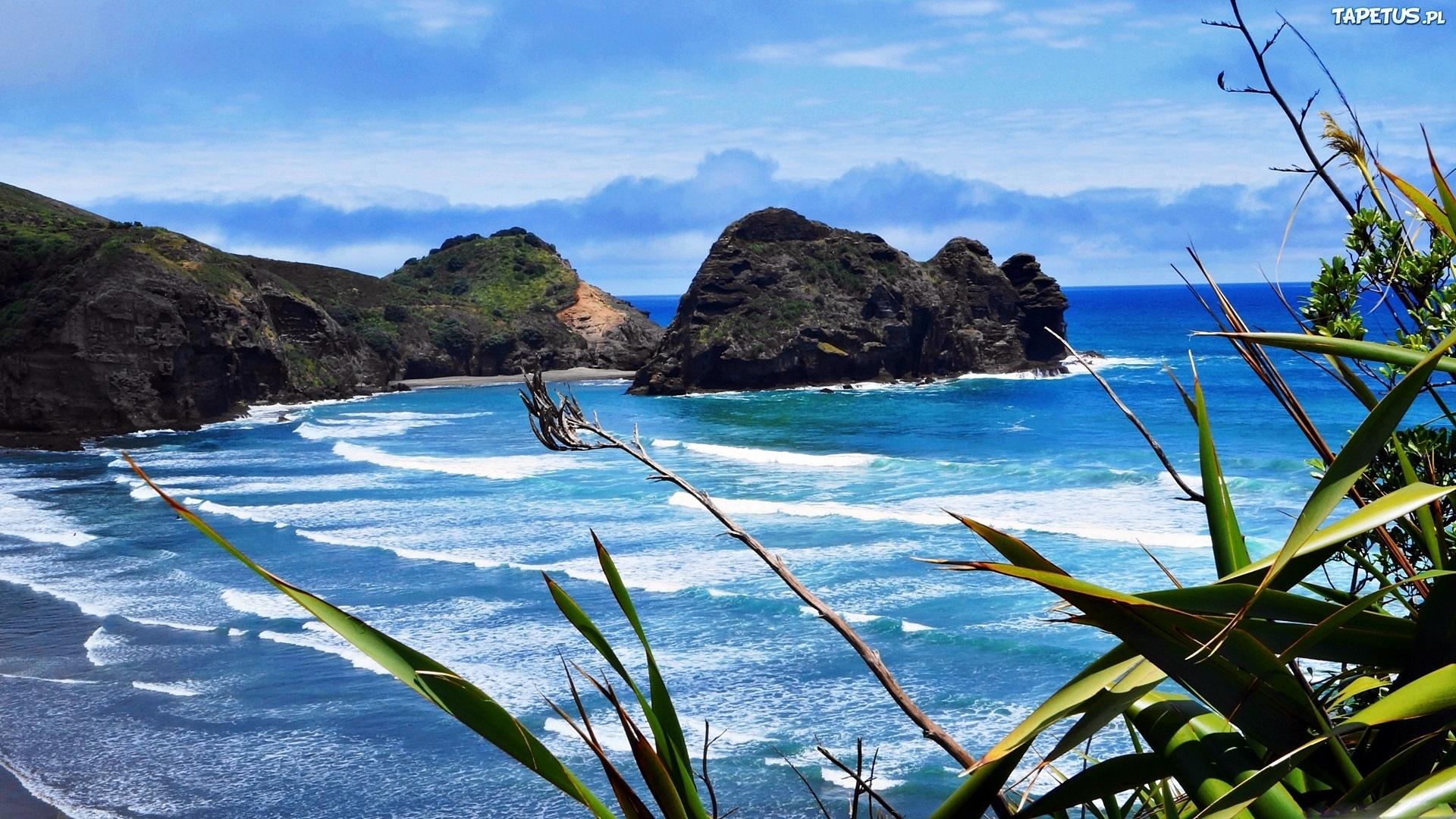 Bay of Islands, New Zealand  № 624993 бесплатно