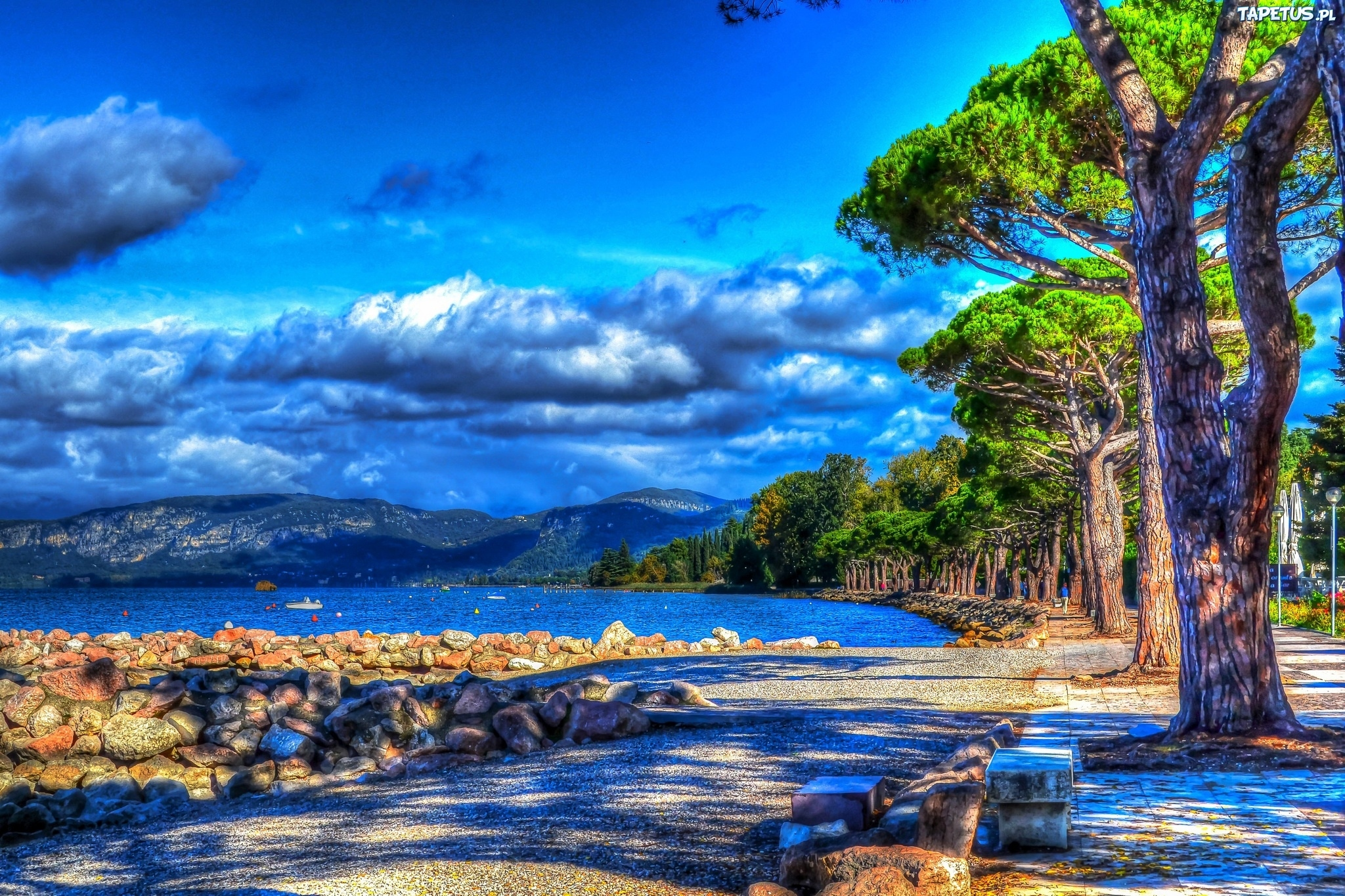 природа деревья камни небо  № 1601453  скачать