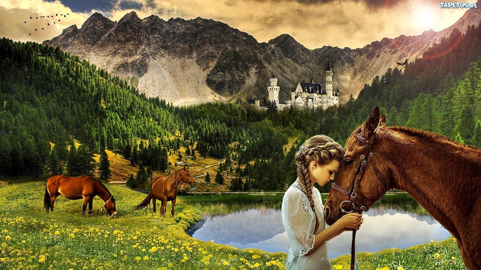 лошадь конь лес поляна  № 99052 бесплатно