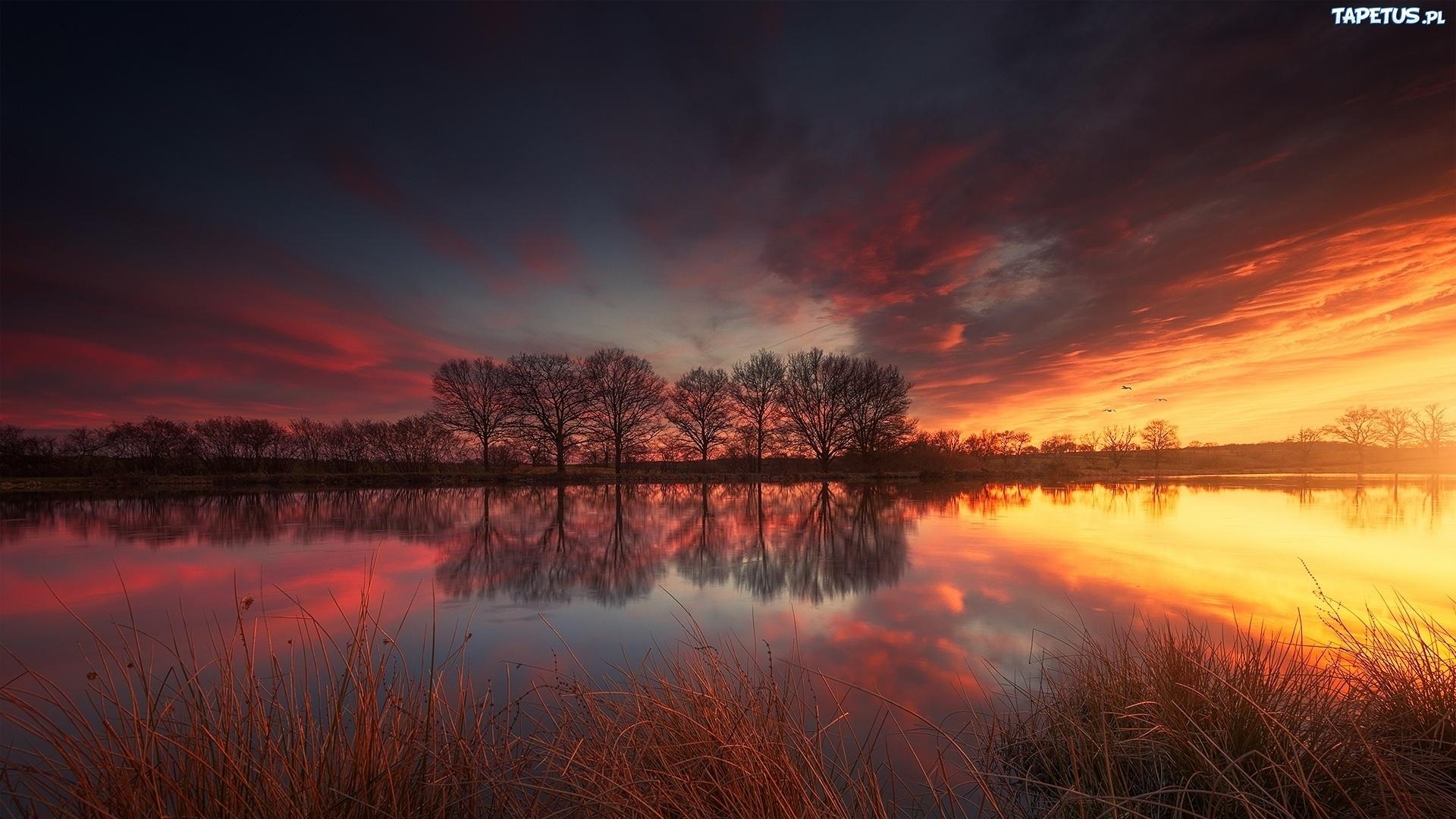 закат озеро осень трава  № 1020799 бесплатно