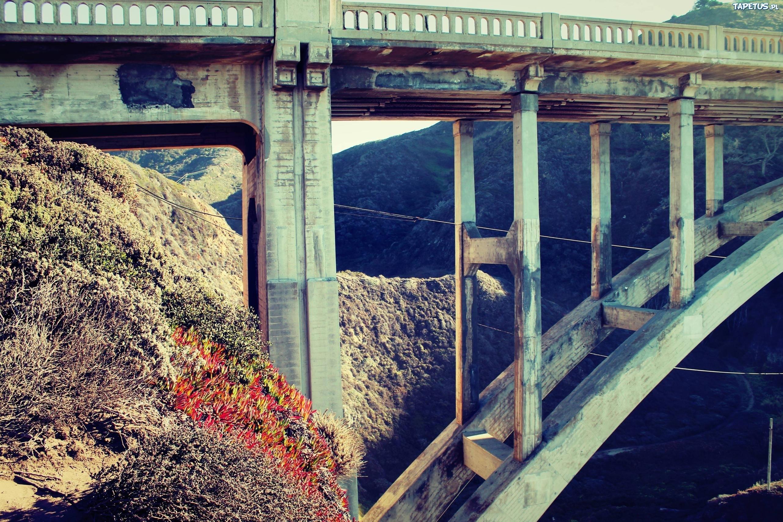 Мост из человек-орла  № 803588 без смс