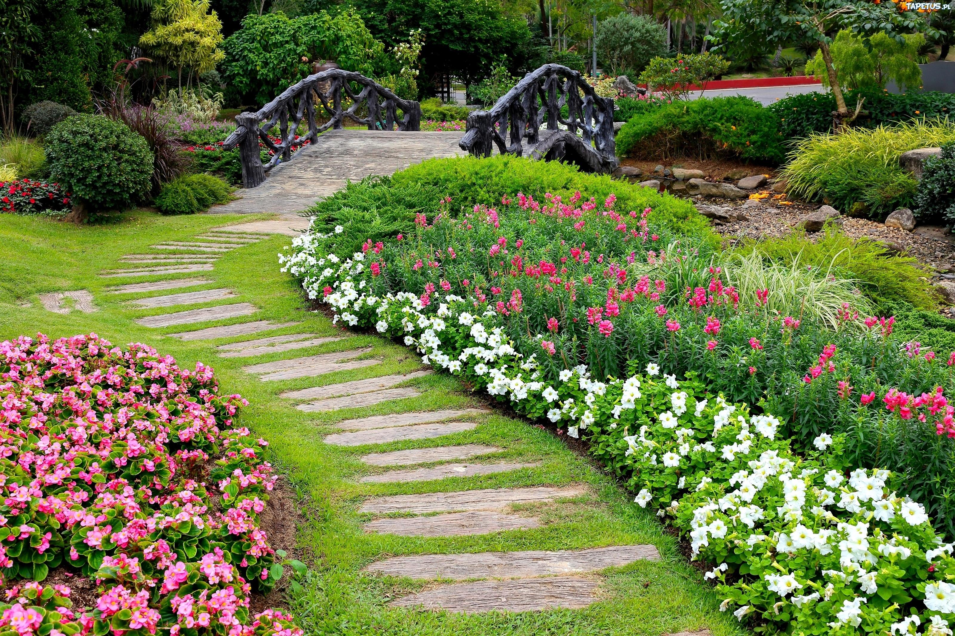 Ogr d cie ka kwiaty mostek for Voir amenagement exterieur