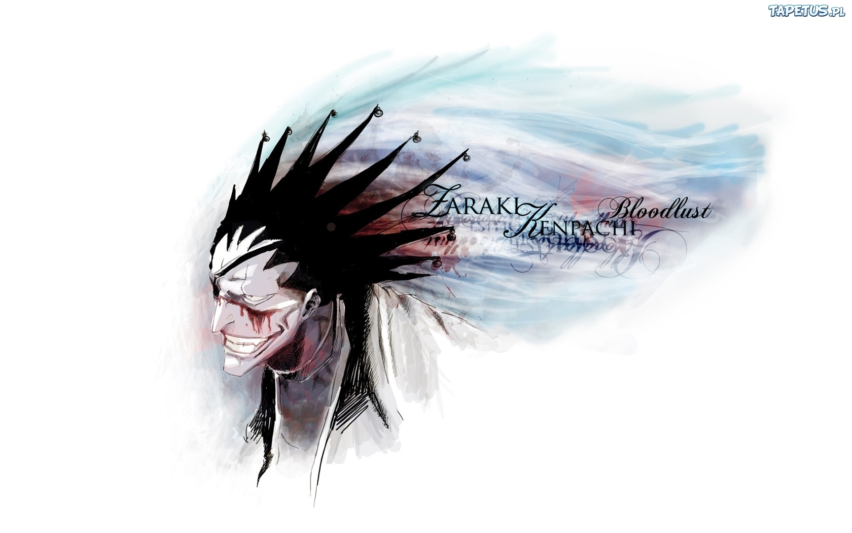 Bleach: Zaraki - Gallery Colection