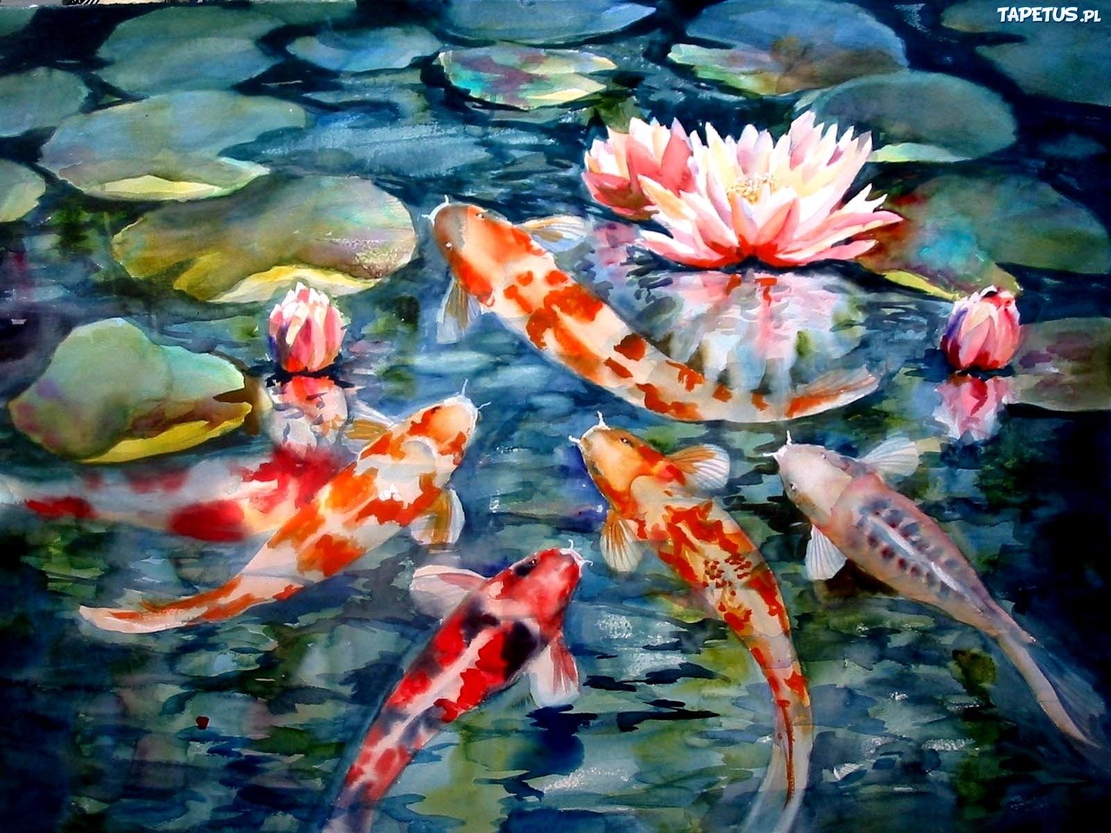 Золотые рыбки на поверхности  № 2075958 без смс