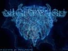 Nightwish,Feel for you