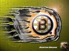 Logo, Drużyny, NHL, Boston Bruins
