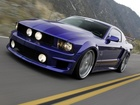 Ford Mustang, Pakiet, Shelby