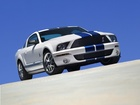 Pakiet, Shelby, Ford Mustang, GT500