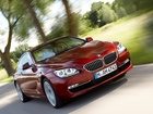BMW F 13, Coupe
