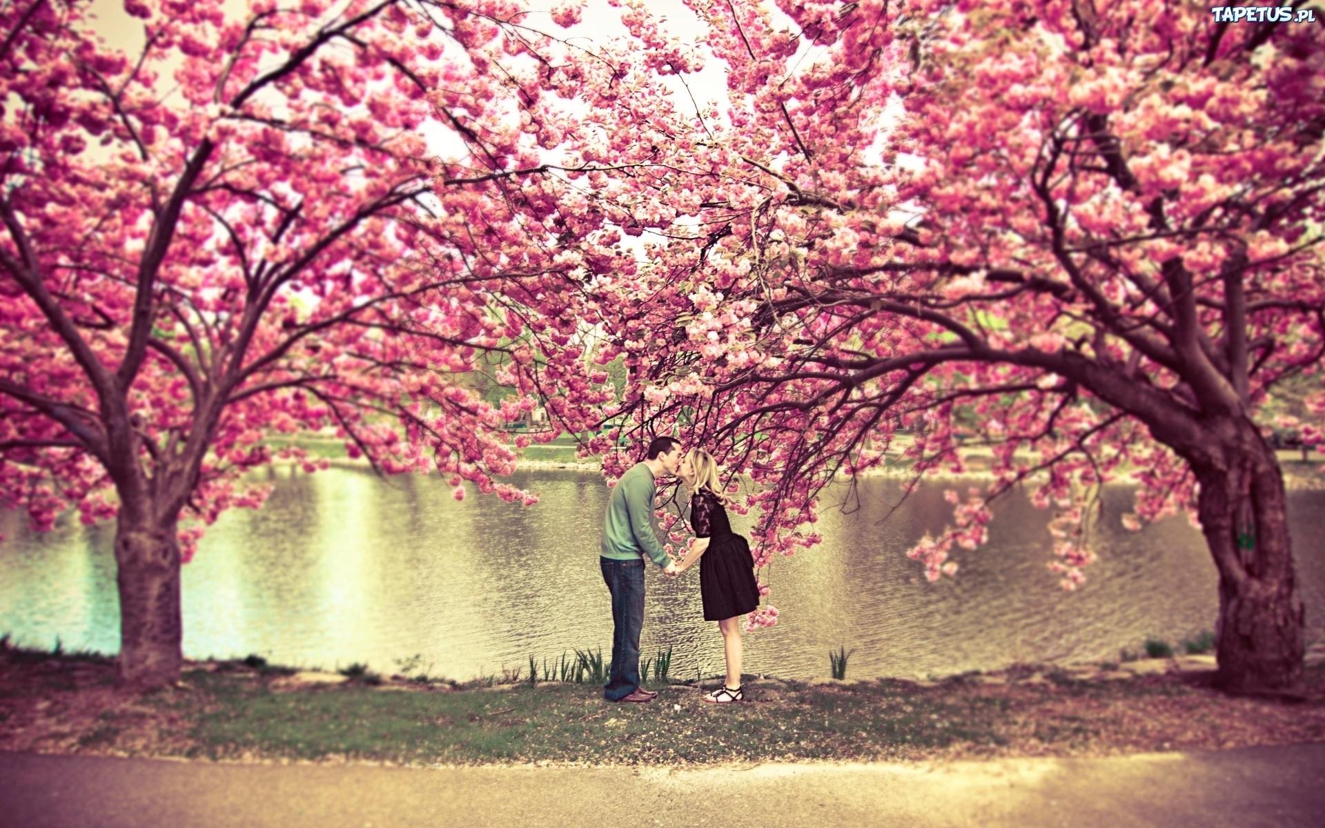 Zakochani, Drzewa, Jezioro