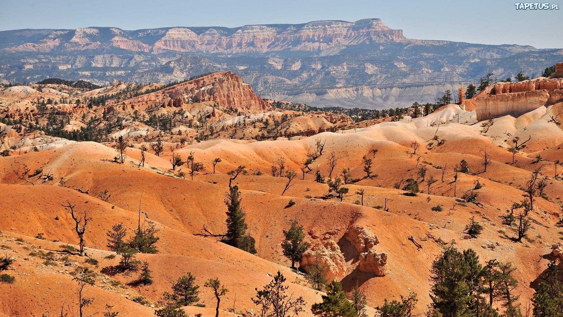 пустыня скалы в хорошем качестве