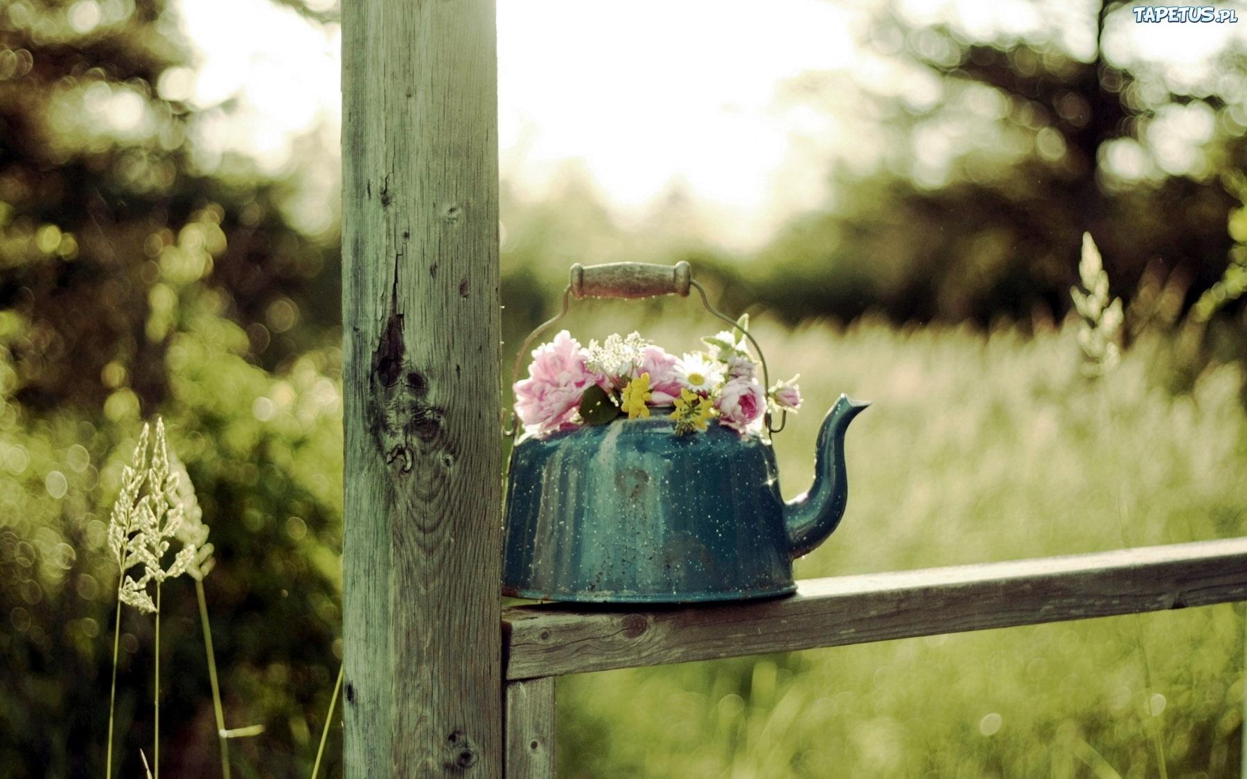 Старый чайничек бесплатно