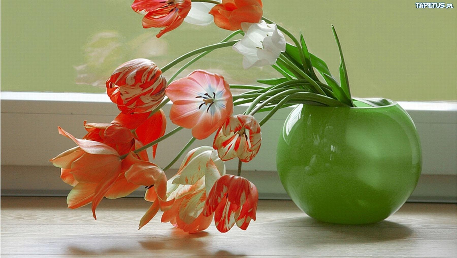 Цветы на окне в вазе скачать