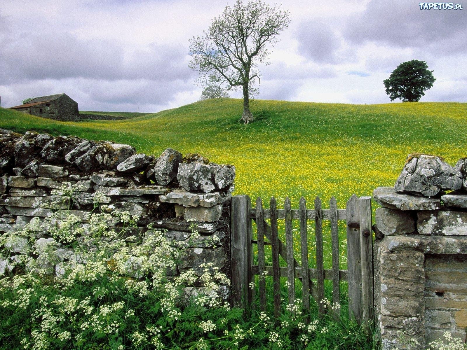 Ворота, Англия без смс