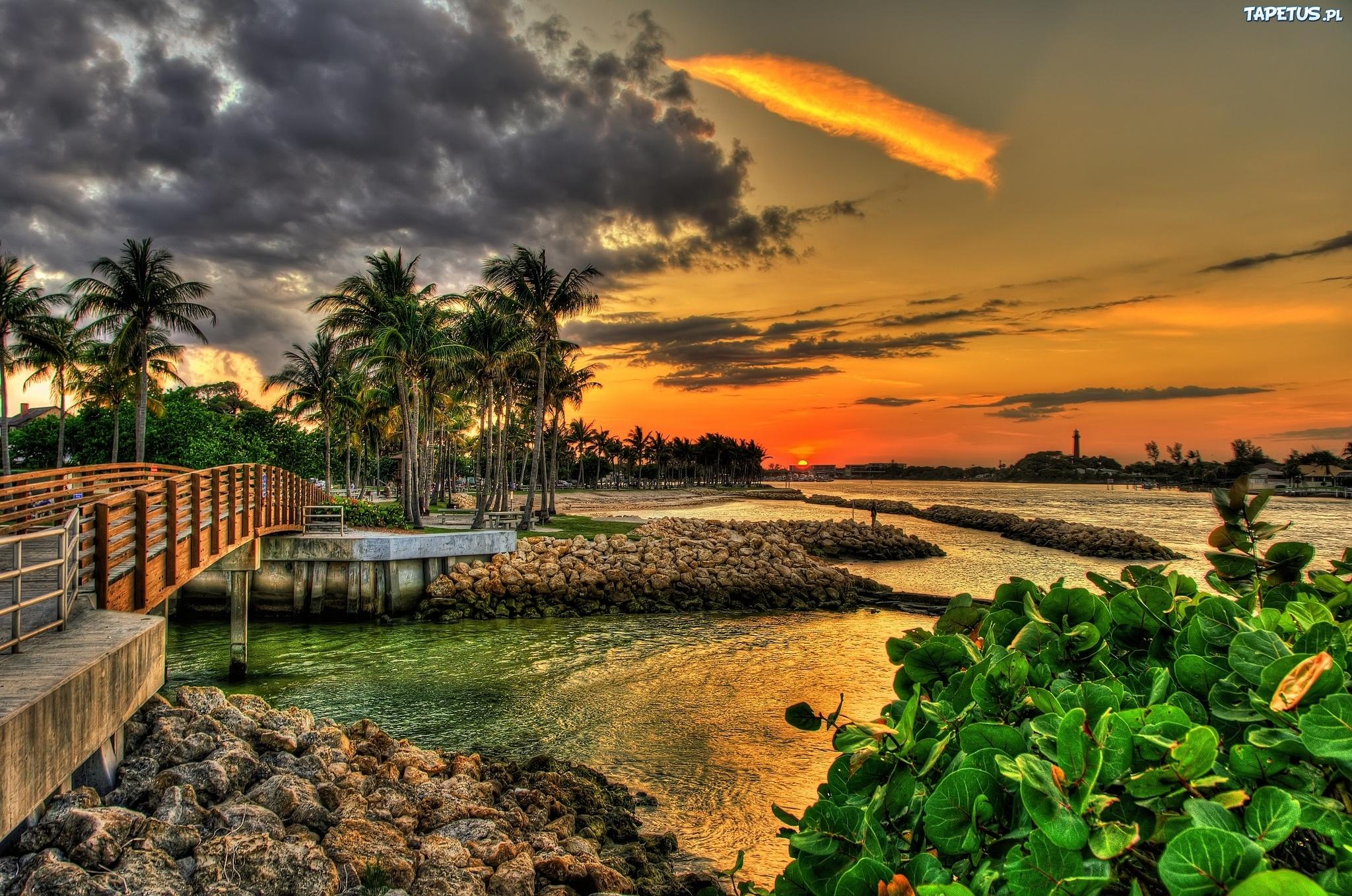 Озеро во Флориде бесплатно