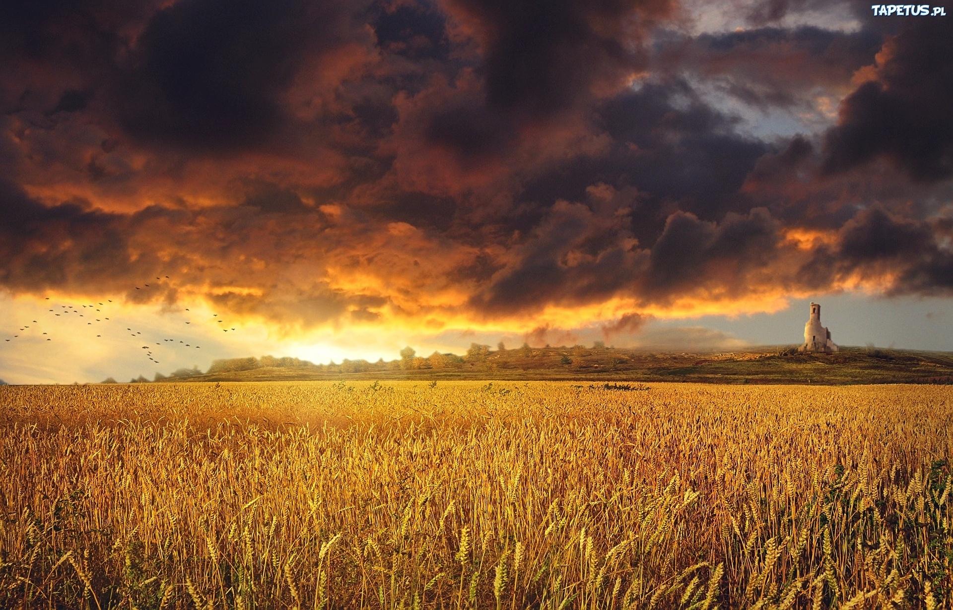 мельница небо поле облака закат без смс
