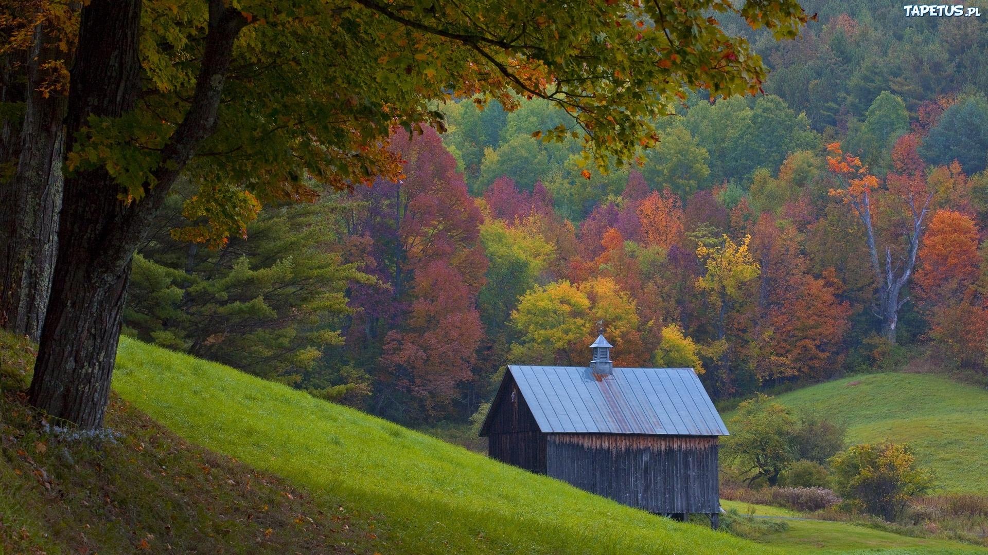 Природа дом осень бесплатно