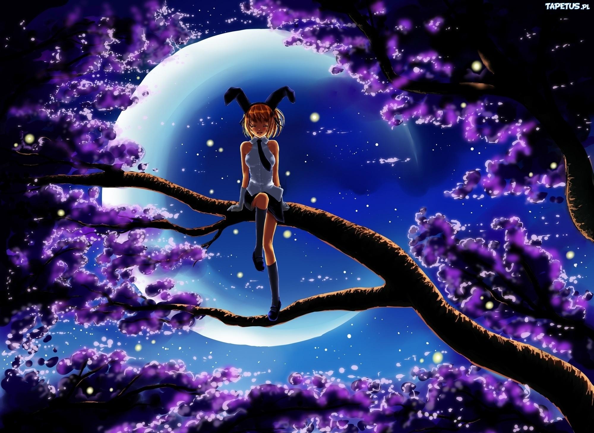 девушка ветка дерево задумчивость girl branch tree thoughtfulness скачать