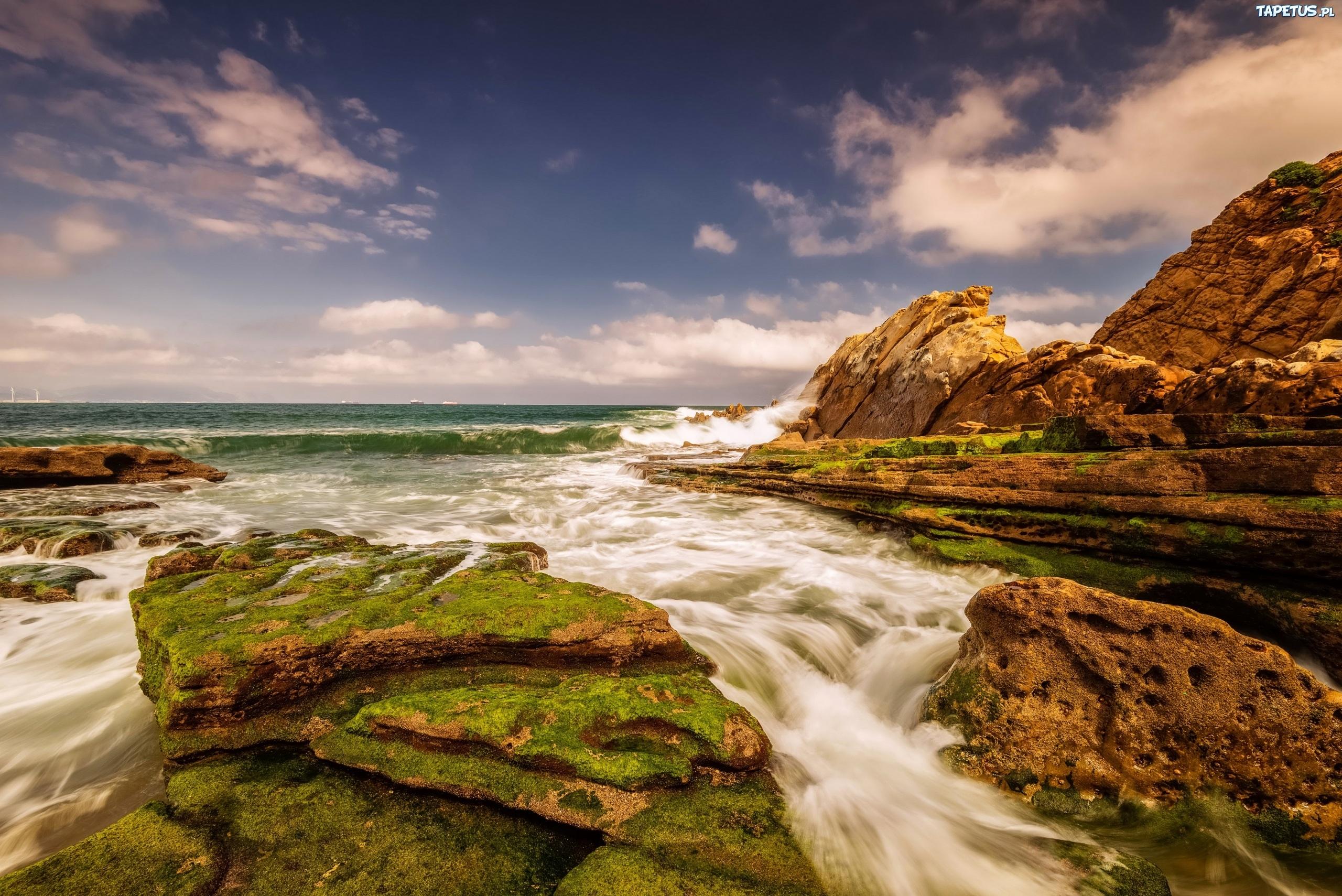Камни со мхом на берегу бесплатно