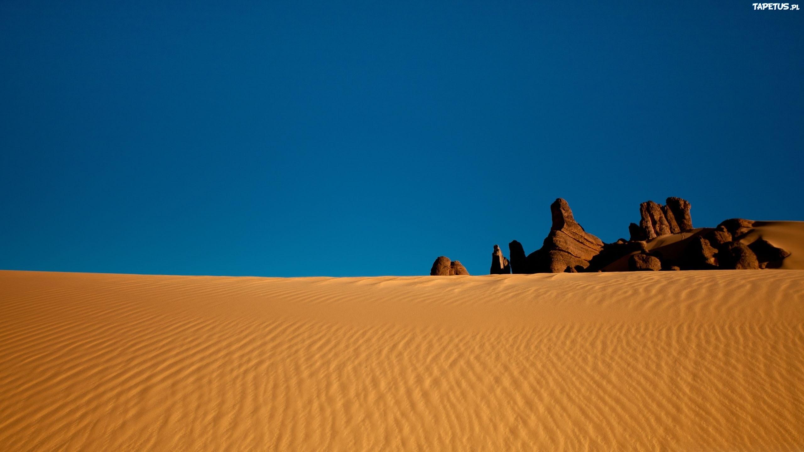природа пустыня без смс