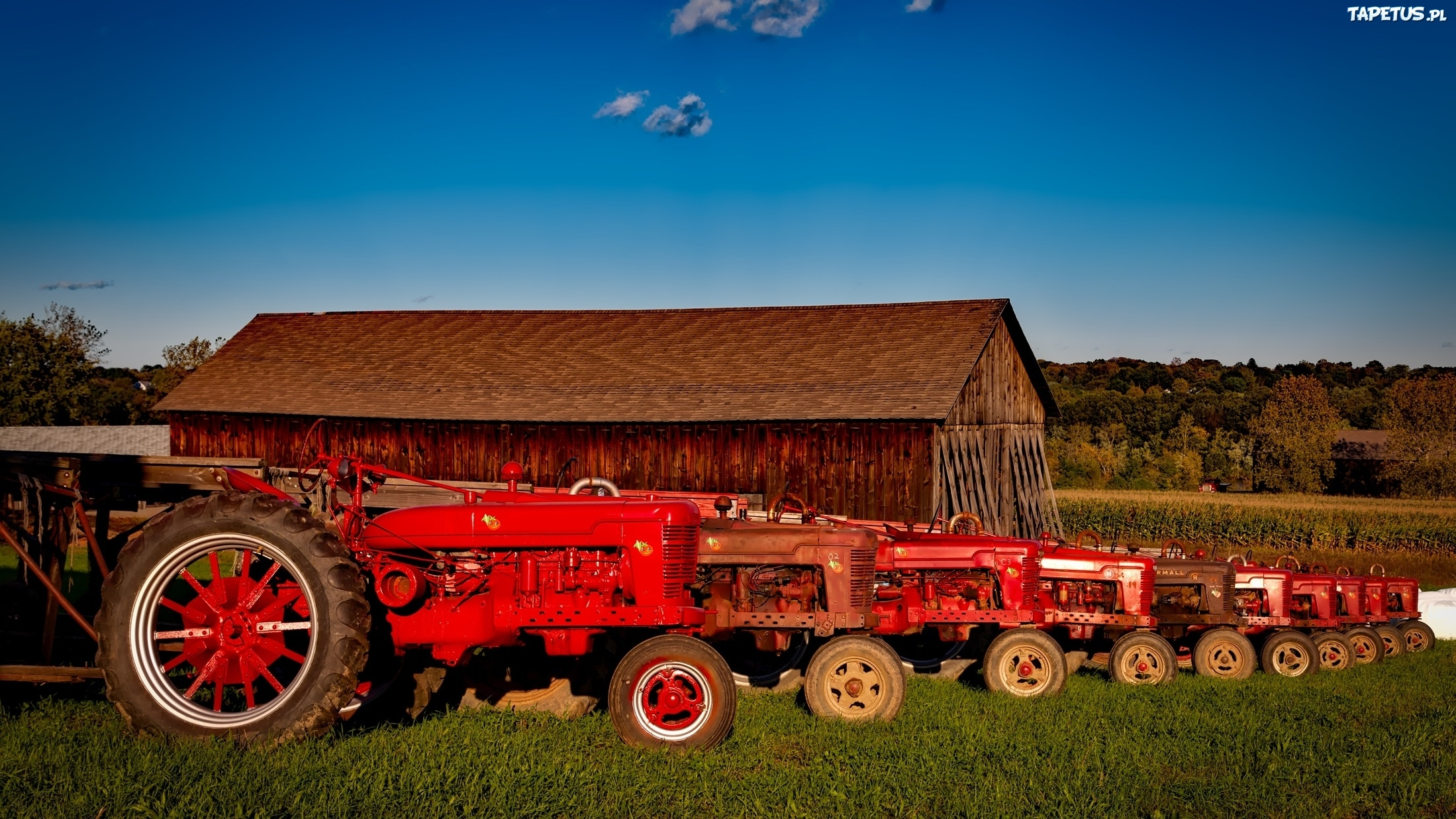 farmall tractor hd wallpapers - photo #4