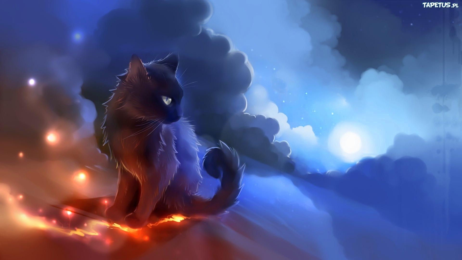 Czarny Kot Grafika 2d