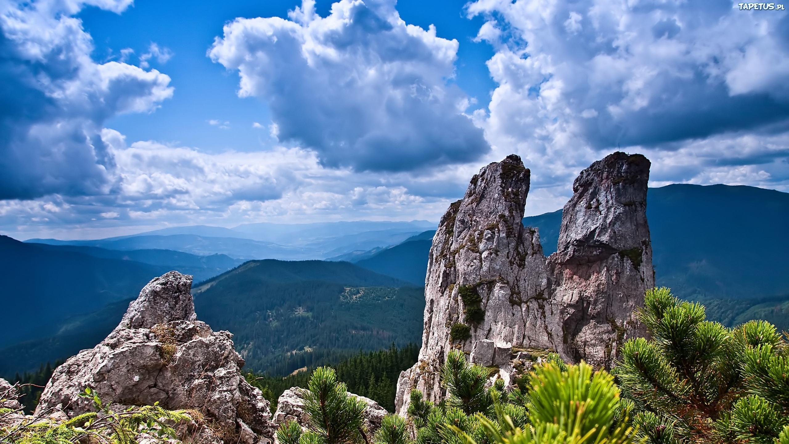 природа горы деревья скалы nature mountains trees rock скачать