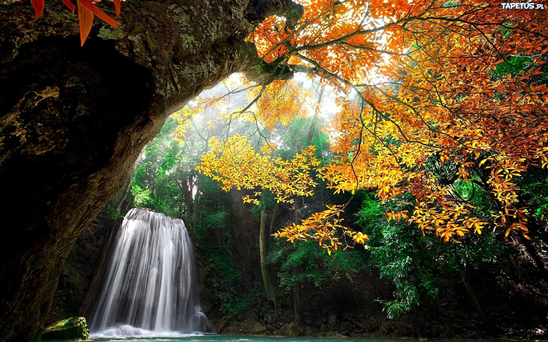 природа водопад деревья осень дом nature waterfall trees autumn the house загрузить