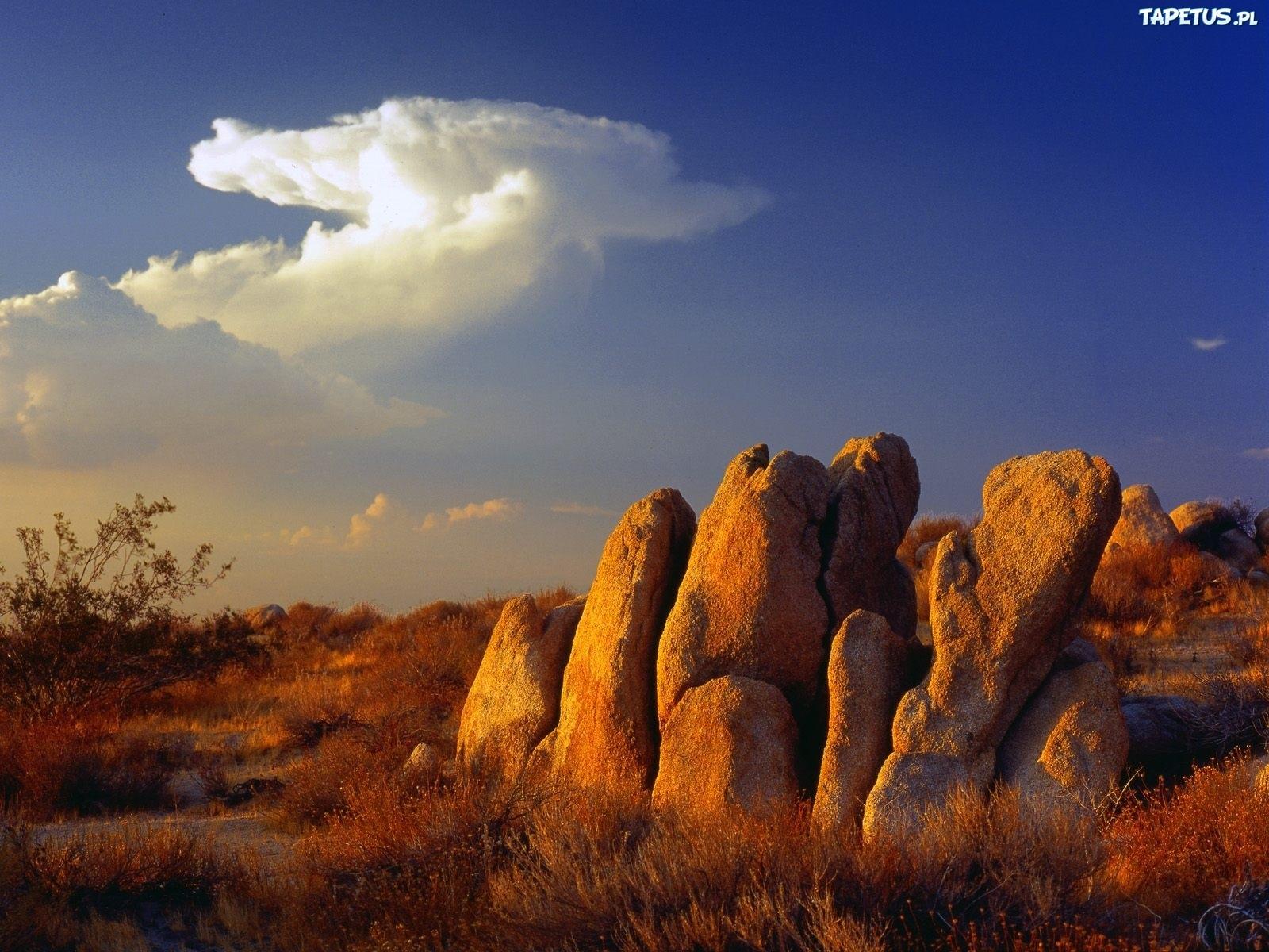 природа трава облака небо камни загрузить